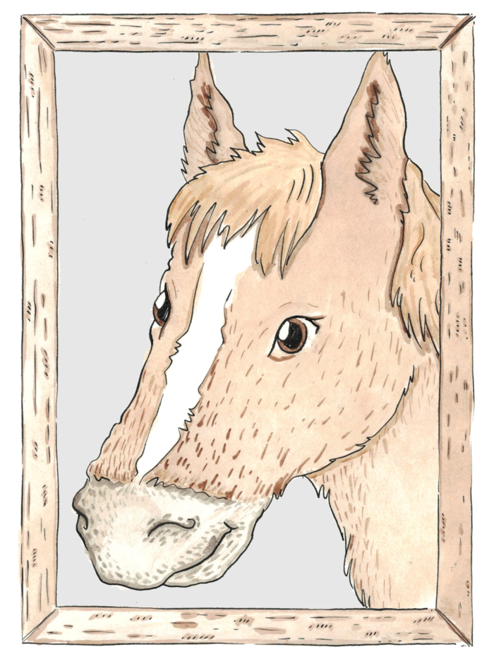 Gerald the horse