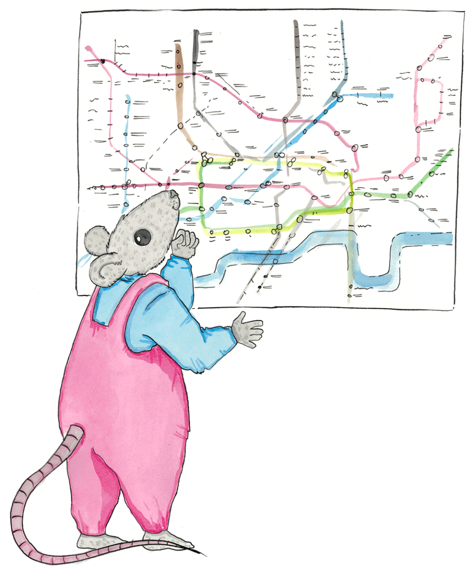 Victoria Mouse Map of Visits