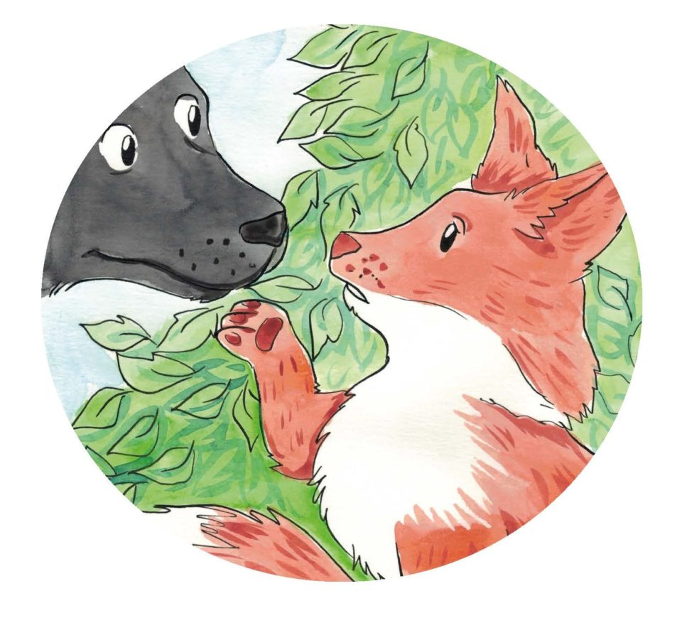 Pickles, a black and white dog meets a young fox cub. This picture will be shown at the Moon Lane CPID Festival